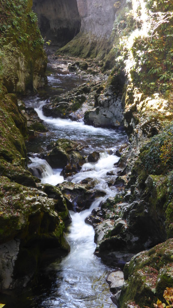 A river gorge near Planches en Montagnes In the French Jura